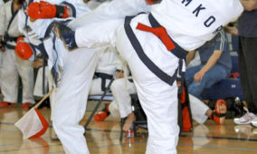 2015 Montgomery County Karate Championships