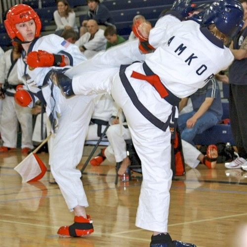 2015 Montgomery County Karate Championships